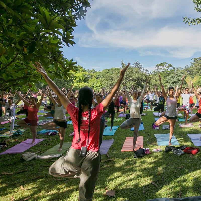 my_yoga_ibira