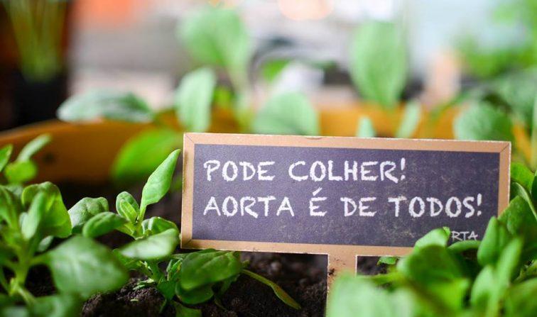 73df32feca7c Aorta Comunitária: hortas urbanas comunitárias. Por uma São Paulo ...